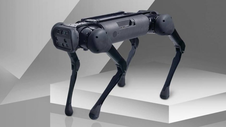 chinese-robo-dogs